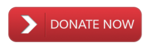 Donate-Button_1
